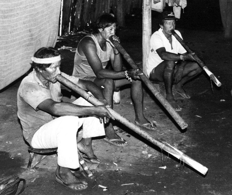 Musique Journal -  Rituels bruitistes et méthodiques des Indiens d'Amazonie